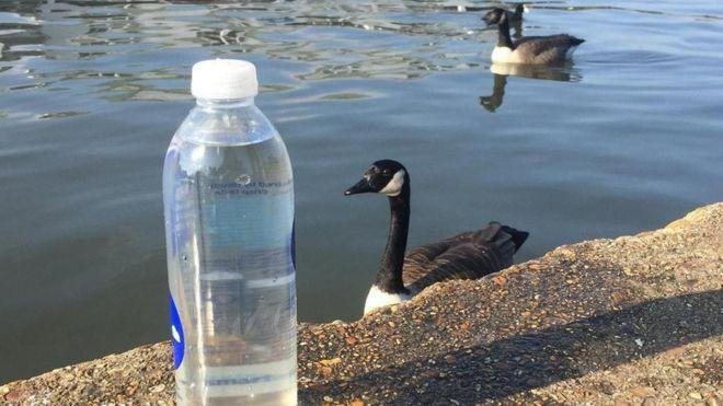 Água do Rio Tâmisa em uma garrafa de água