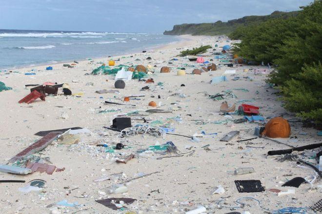 Lixo espalhado por praia em Henderson