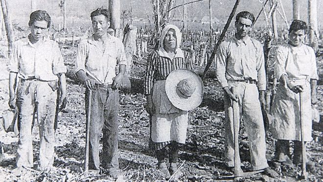 Agricultores japoneses en Colombia