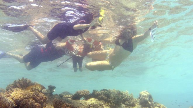 A group of tourists snorkel on the Great Barrier Reef in 2014