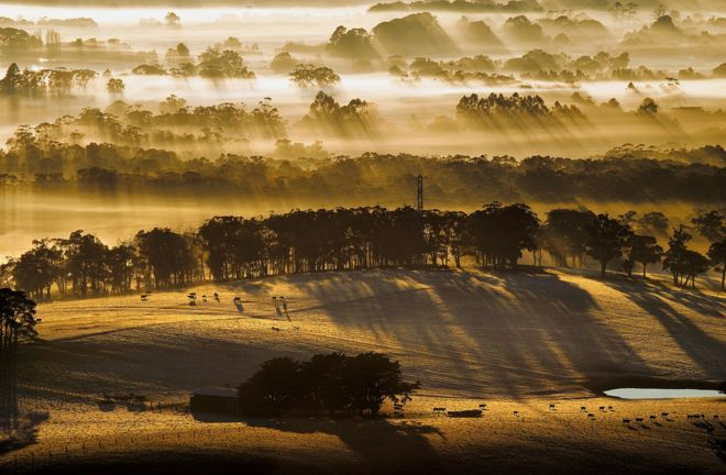 Sunrise streaks through fog seen from Mount Buninyong, Victoria, 23 July 2014