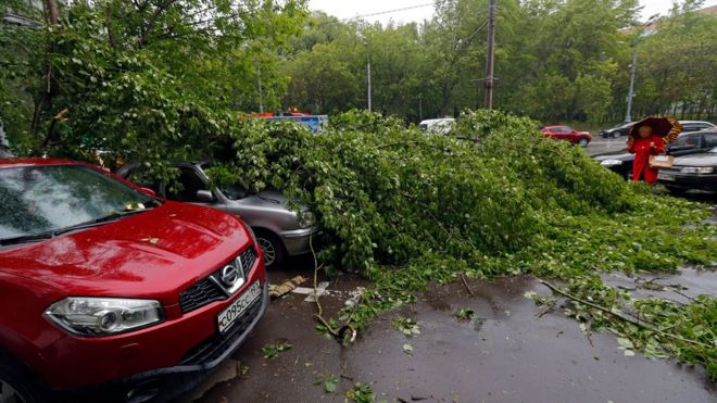 Cars under fallen trees after a strong thunderstorm hit Moscow, Russia, 29 May 201