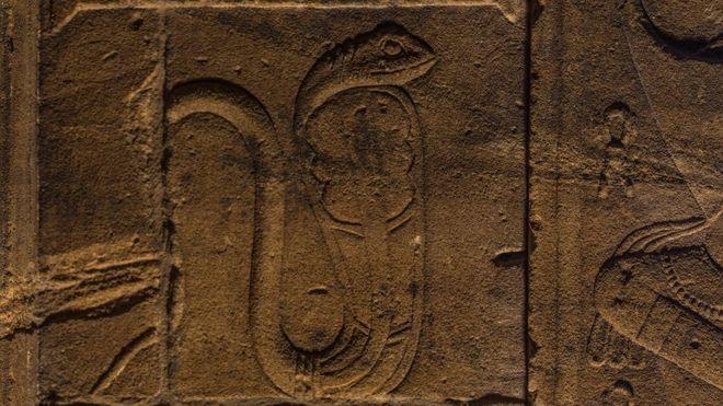Serpiente egipcia