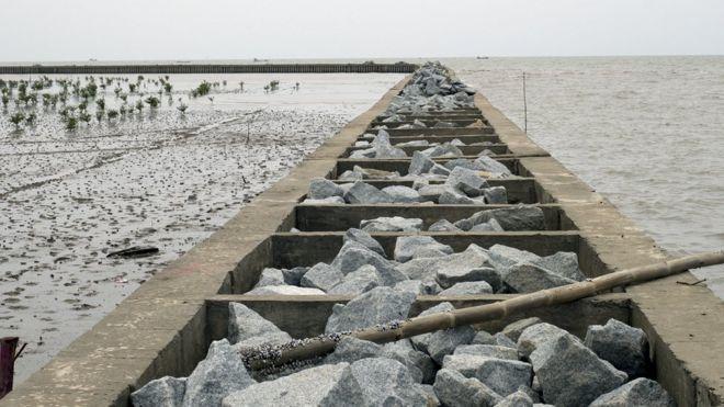 Đê ngăn nước mặn ngập vào đồng ruộng ở Đồng bằng sông Cửu Long