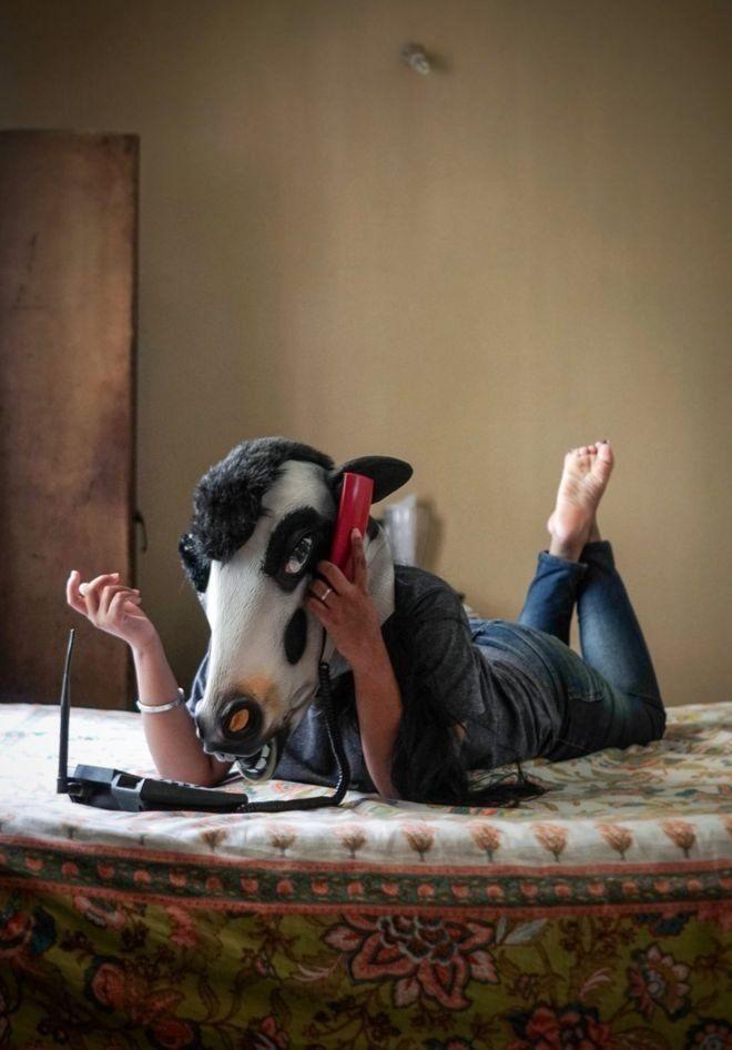 topeng sapi di india