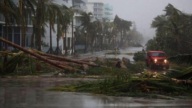 Duufaanta Irma