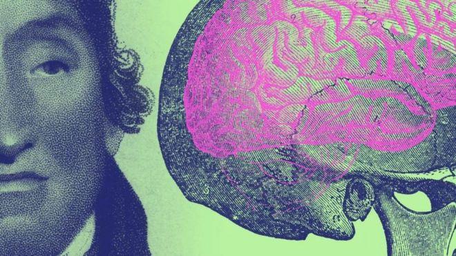 Homem e cérebro