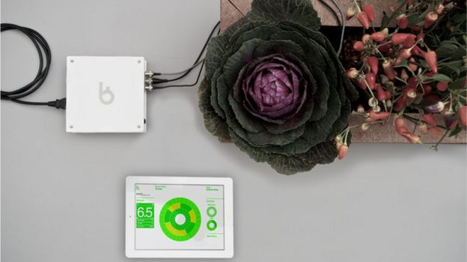 Image Caption How Does Your Garden Grow? Bitponics Monitors How Plants  Develop And Stores The Data In The Cloud