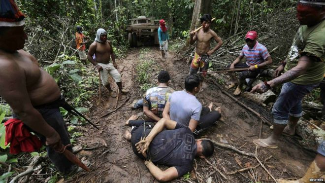 Brazil Amazon tribe takes direct action against loggers - BBC News
