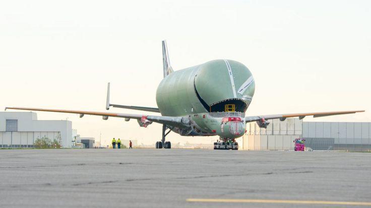 Airbus Beluga XL on tarmac