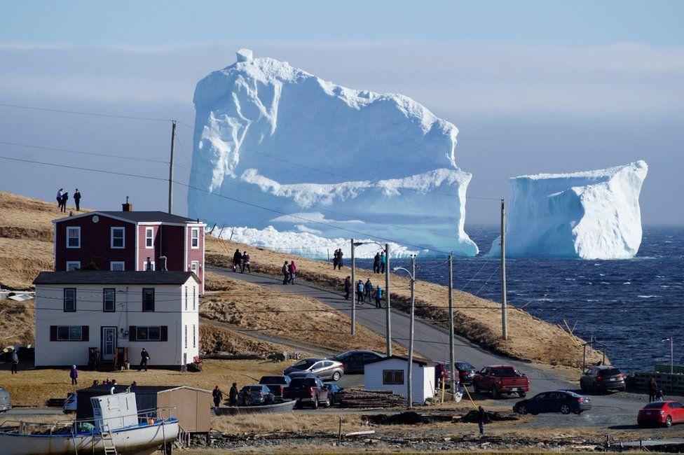 Iceberg na costa de Ferryland