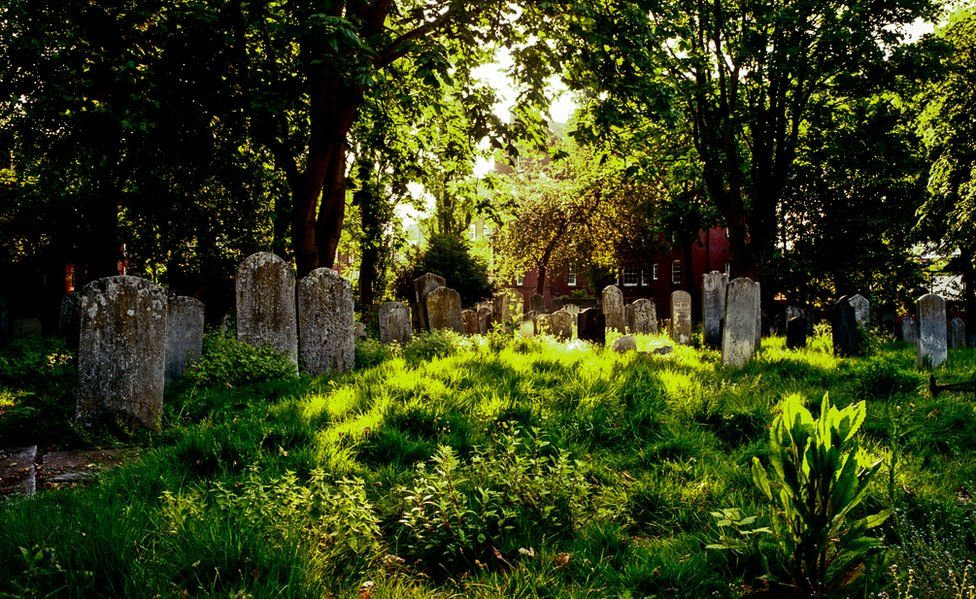 Кладбище Брейди-стрит