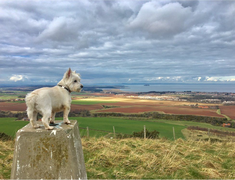 your pictures of scotland bbc news