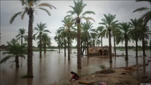 Суккар шаҳри яқинидаги Бух Сиелро қишлоғининг сув остида қолган далалари