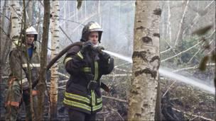 Пожарные тушат огонь в лесу
