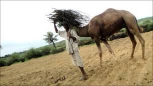 سندھ میں تھر پارکر