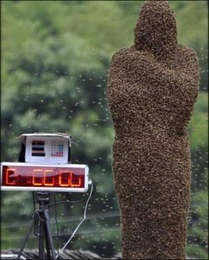 Бджолина мумія