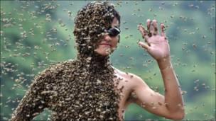 Змагання з приваблення бджіл у провінції Хунань