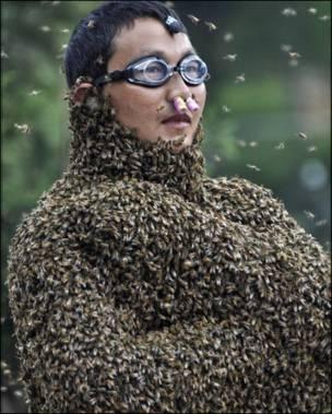 Один із двох бджолярів Вань Далін
