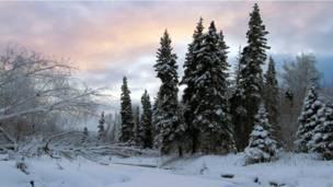 Оттепель на Аляске