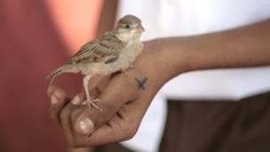 पंजिम, भारत