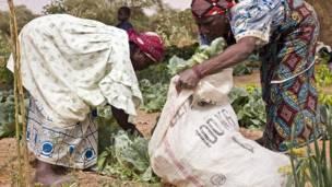 Crisis humanitaria en el Sahel africano