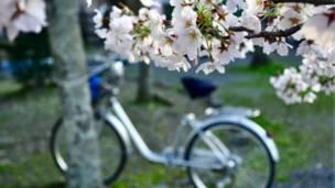 साइकिल सवारी