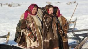 Kehidupan penggembala rusa kutub di Arktik