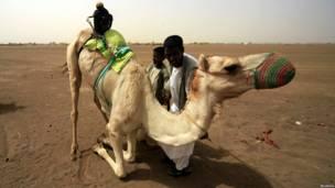 Верблюжья гонка в Судане