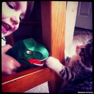 Niño con juguete y gatito