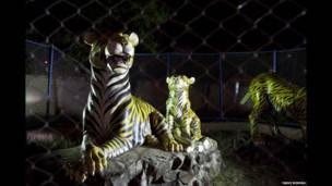 Kebun binatang palsu India