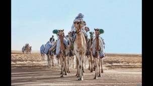 Mansour Al Manaei, Các Tiểu vương quốc Ả Rập