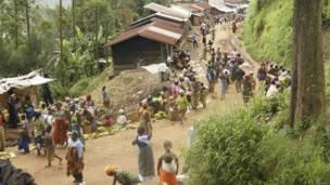 Des vendeurs de légumes au bord d'une route à Masisi, à 88 km au nord-ouest de Goma. Vendredi 4 octobre. Photo Reuters