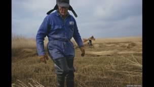 В отличие от этих двух фотографов, Джейсон Партика работает в своей стране, документируя жизнь сельских районов восточной Англии (Резка тростника, Саффолк, 2004 г., Джейсон Партика