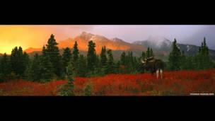 A change of seasons 1998; Thomas Mangelsen;Taman Nasional Denali, Alaska, AS Fujicolour 800 film