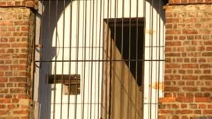 सेल्युलर जेल