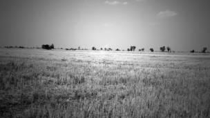 क़तार के आख़िरी, पंजाब, किसान, आत्महत्या