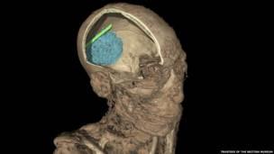 ममी के सीटी स्कैन का 3-डी रूपांतरण