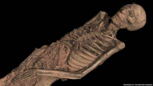 The CT scan of the mummy of an adult male (name unknown), showing his mummified remains. © Trustees of the British Museum