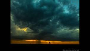 Gün batımında yağmurun altında bir zürafa. Paul Goldstein / Rex Features