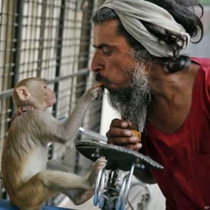 बंदर के साथ राजेंद्र शुक्ला