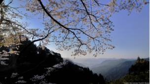 Caminho de Kumano. Credito: Tanabe City Kumano Tourism Bureau.