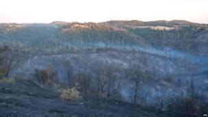"""El humo sobresale tras el paso del """"Incendio de Arena"""" por el Condado de Amador, a ocho kilómetros de Sacramento. (EPA)"""