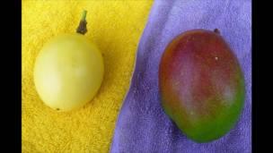 Foto: Attilio Polo, Frutas na Venezuela