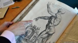 Livro de anatomia de 1543 mostra precisão e riqueza de detalhes incomum   Imagens Cortesia da Biblioteca da Universidade de Cambridge.