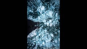 فقاعات غاز الميثان تحت سطح إحدى البحيرات المتجمدة. بول زيزكا، كاترز نيوز