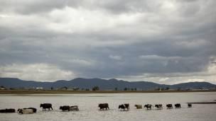 En las montañas de la zona occidental del país, en Michoacán, las nubes colmaban el cielo.