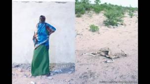 Shukri 'yar shekara 50 daga garin Gangara a yankin Awdal da ke kasar Somaliland.