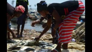 तोम्बो बंदरगाह, मछुआरे