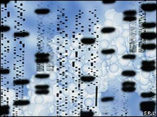 Secuencia molecular de ADN.